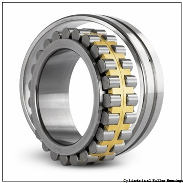 American Roller ADA 5316 Cylindrical Roller Bearings
