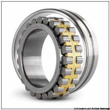 American Roller CD 317 Cylindrical Roller Bearings