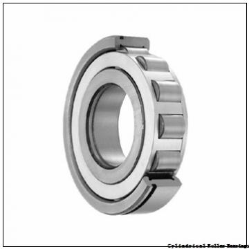 American Roller ECS 669 Cylindrical Roller Bearings