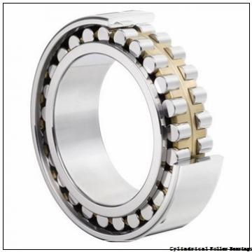 American Roller HCS 310 Cylindrical Roller Bearings